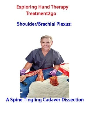 CADAVER Shoulder/Brachial Plexus: A Spine Tingling Cadaver Dissection